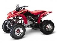 Honda Recon TRX250
