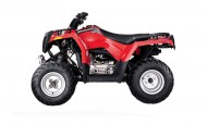 Polaris Sawtooth 200